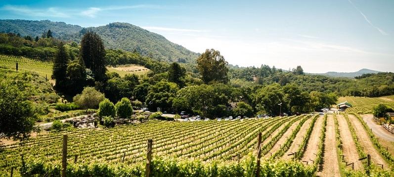 Self Storage Australia | Adelaide | winery