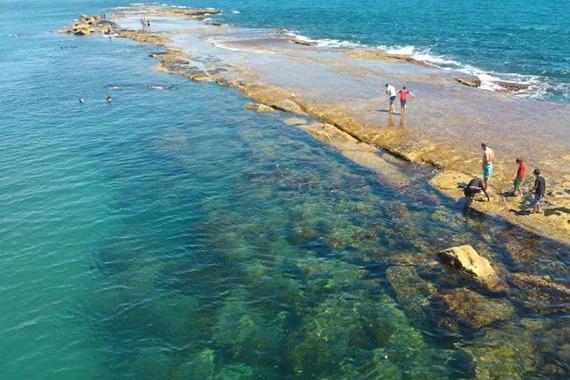 Port Noarlunga Reef