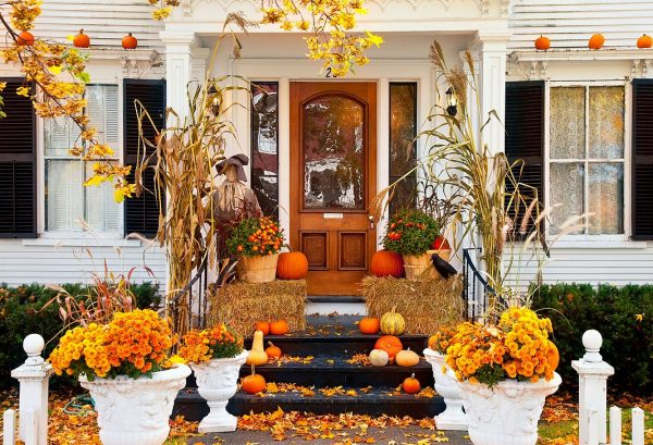 a festive front yard with halloween decorations