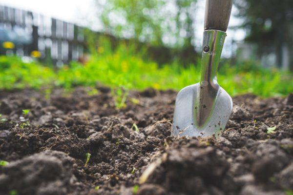 a trowel dug halfway through the soil