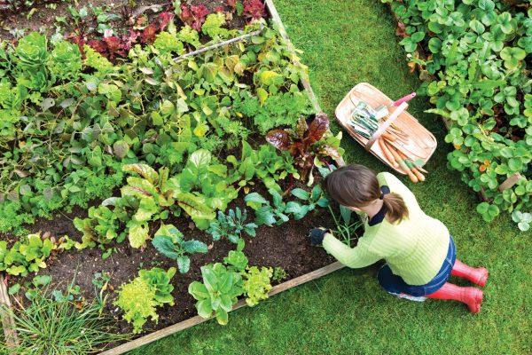 a woman in a green shirt gardening